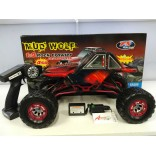 AUTOMODELO ELETRICO ROCK CRAWLER MUD WOLF 1/9 COMPLETO RÁDIO 2.4 GHZ BATERIA LIPO E CARREGADOR FS RACING 53501TV